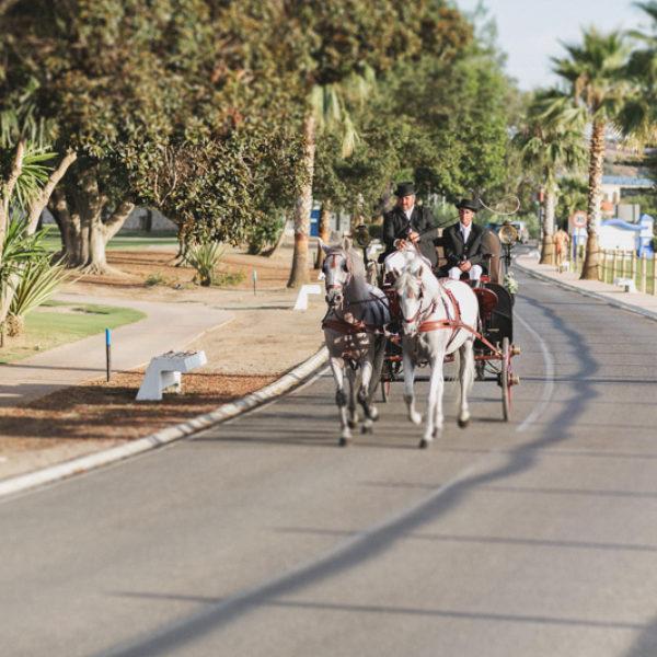Boda Hacienda las Fuentes, Mijas, Andalucía-Rocío+Jose033